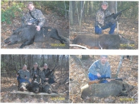 hick-party-boar-hunt